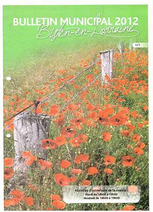 2012 bulletin municipal